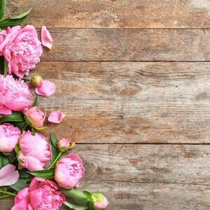 depositphotos_197405106-stock-photo-beautiful-fragrant-peony-flowers-wooden